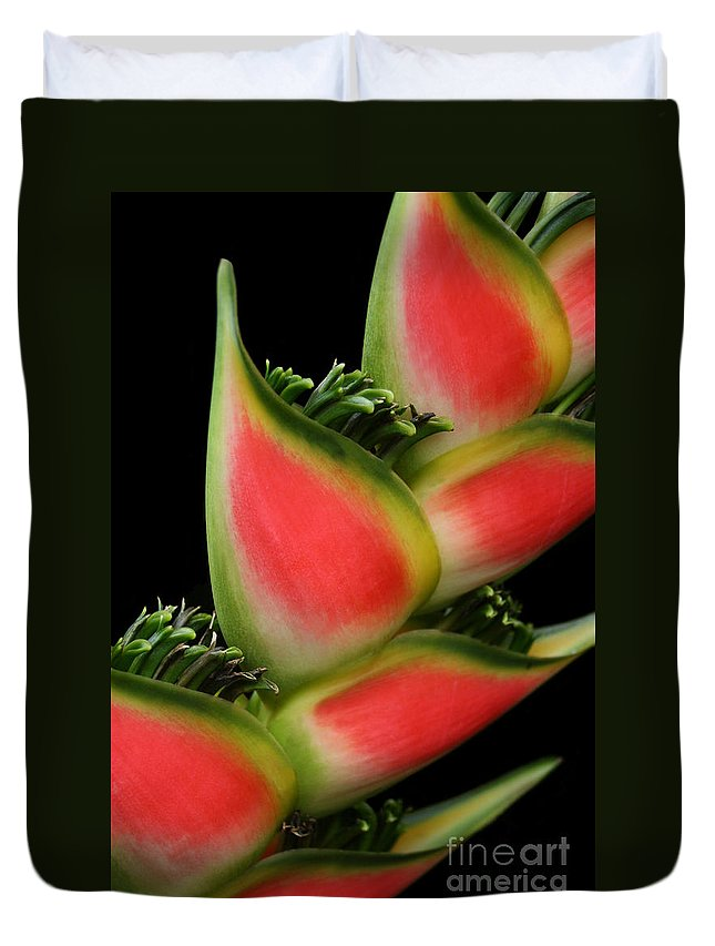 Rainbow Heliconia Duvet Cover featuring the photograph Heliconia Wagneriana - Giant Lobster Claw Heliconiaceae - Maui Hawaii by Sharon Mau
