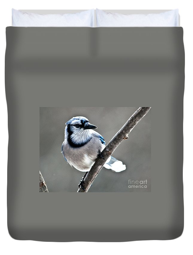 Landscapes Duvet Cover featuring the photograph Hello Blue by Cheryl Baxter