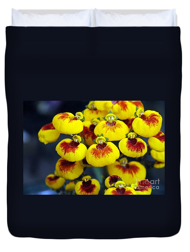 Flowers Duvet Cover featuring the photograph Hello by Sheila Laurens