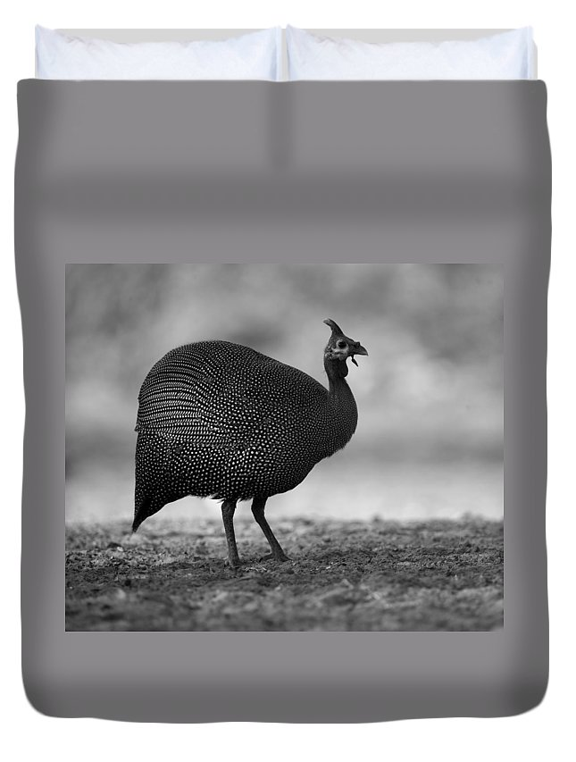 Guinea Duvet Cover featuring the photograph Helmeted Guineafowl by Bruce J Robinson