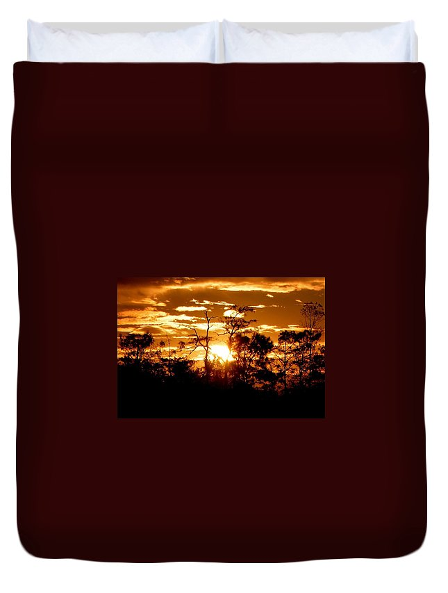 Florida Everglades Duvet Cover featuring the photograph Here Comes The Sun by Mitch Caueffield