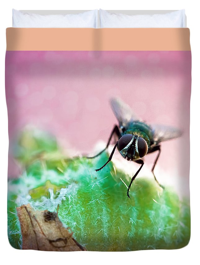 Fly Duvet Cover featuring the photograph Here's Looking At You by Jon Woodhams