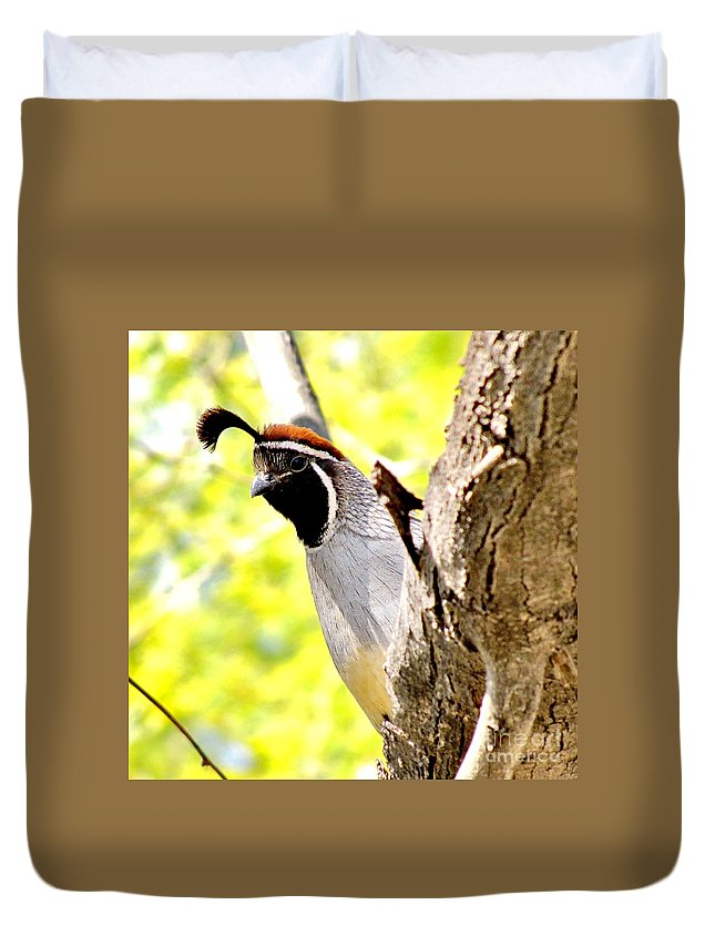 Gambel's Quail Duvet Cover featuring the photograph Here's Looking At You by Marilyn Smith