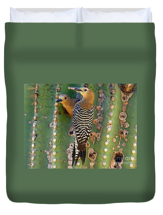 Cactus Duvet Cover featuring the photograph Here's Lunch by Bob Hislop