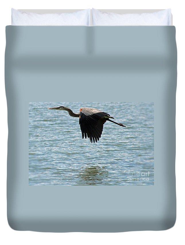 Colorado Duvet Cover featuring the photograph Heron by Bob Hislop