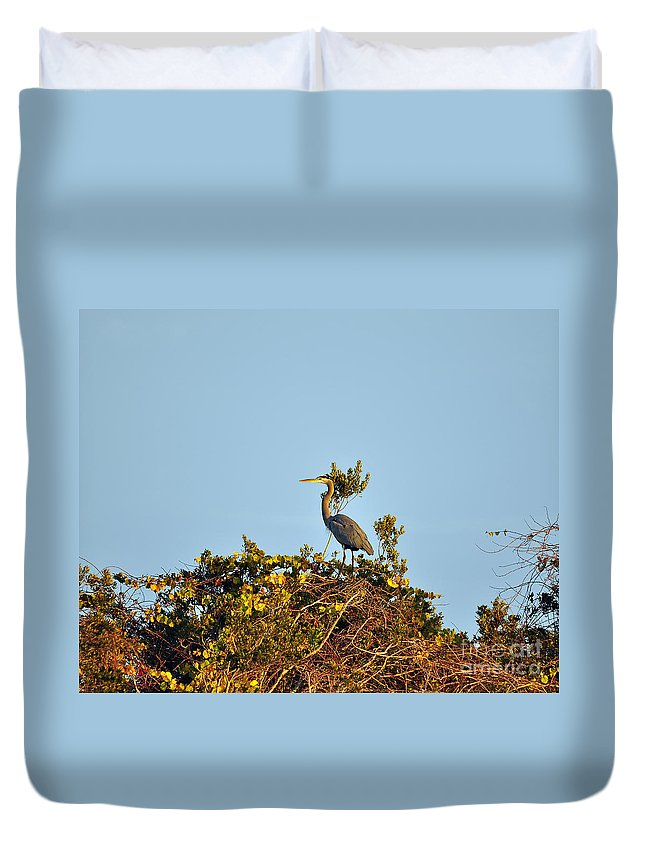 Heron Duvet Cover featuring the photograph Heron Perch by Al Powell Photography USA