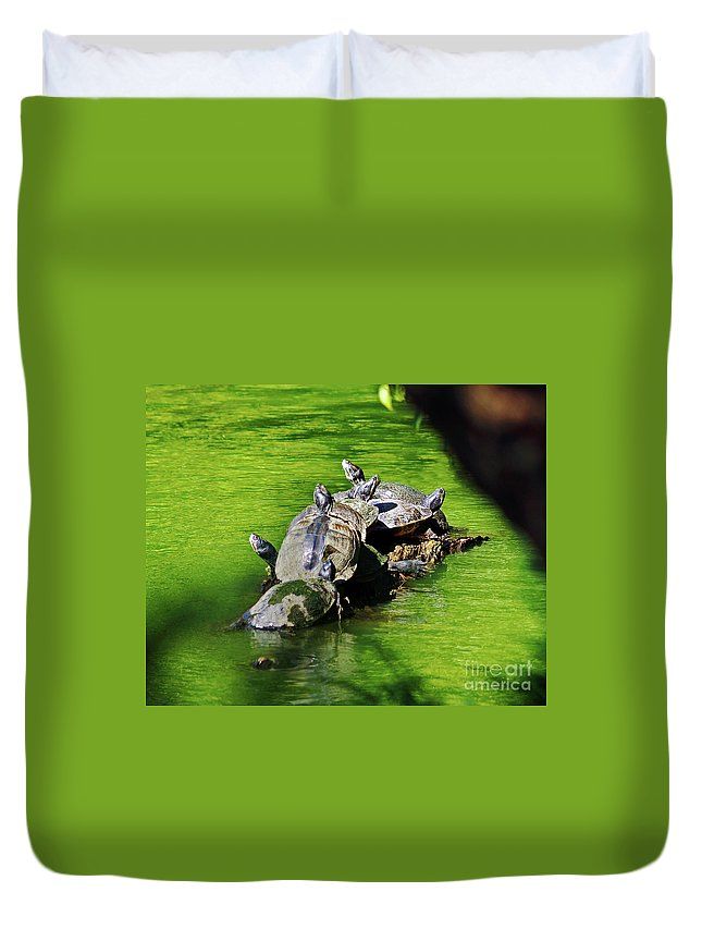 Fine Art Photography Duvet Cover featuring the photograph Hey I Was Here First by Patricia Griffin Brett