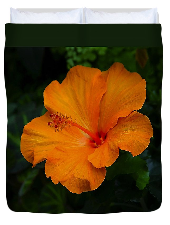 Hibiscus Duvet Cover featuring the photograph Hibiscus 9 by Ingrid Smith-Johnsen