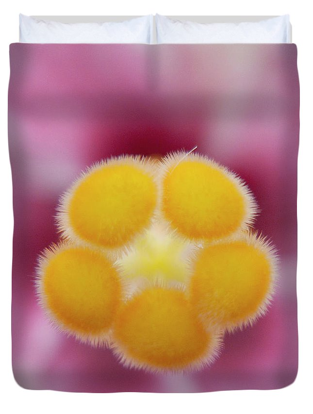 Heiko Duvet Cover featuring the photograph Hibiscus by Heiko Koehrer-Wagner