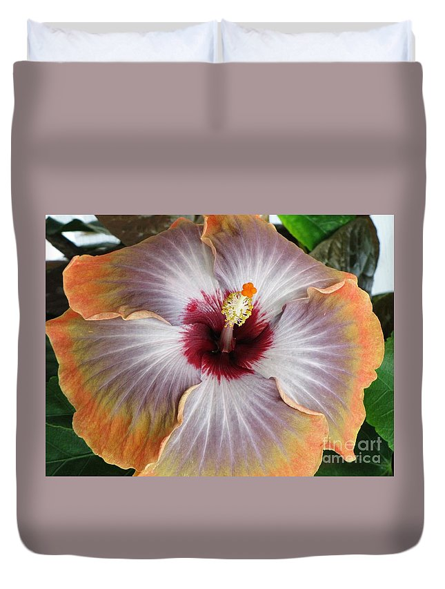 Hibiscus Duvet Cover featuring the photograph Hibiscus by Jennifer Wheatley Wolf