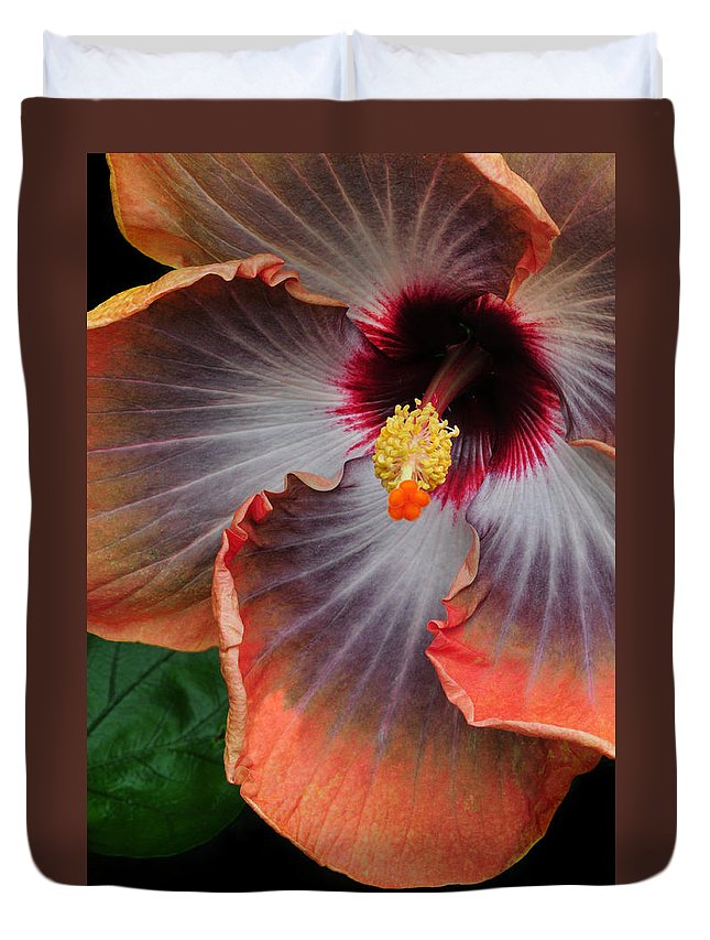 Hibiscus Duvet Cover featuring the photograph Hibiscus Key Largo by Dave Mills