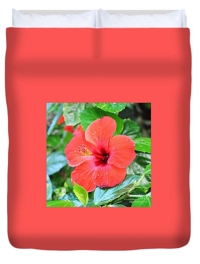 Flower Duvet Cover featuring the photograph Hibiscus by Luis Alvarenga