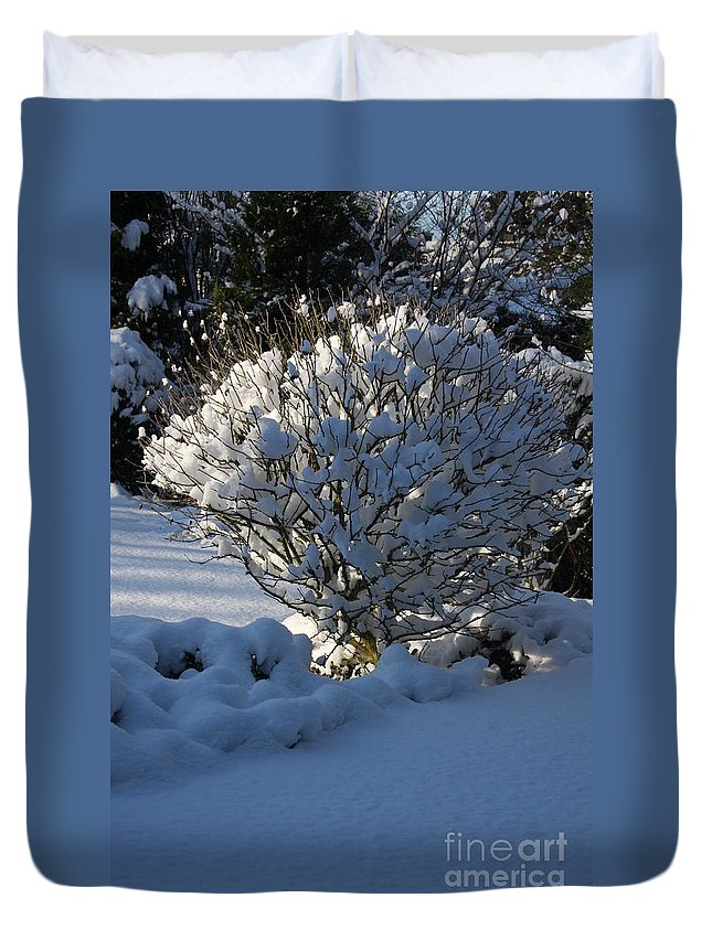 Winter Duvet Cover featuring the photograph Hibiskus In The Wintertime by Christiane Schulze Art And Photography