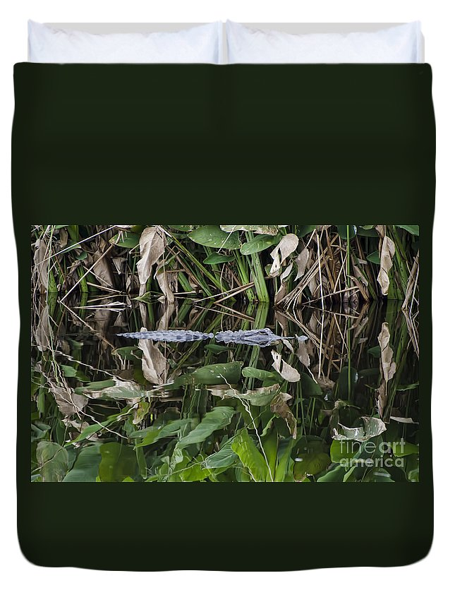 Water Duvet Cover featuring the photograph Hiding by Judy Wolinsky