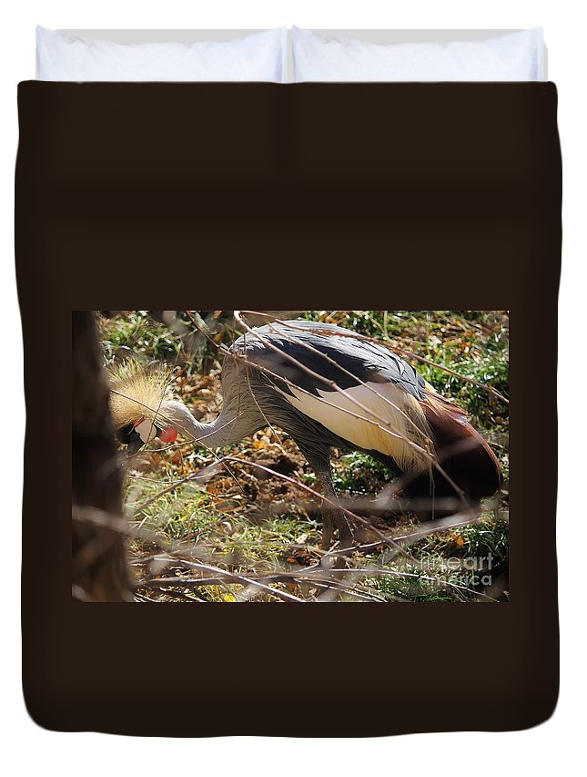 Birds Duvet Cover featuring the photograph Hiding by Tonya Hance