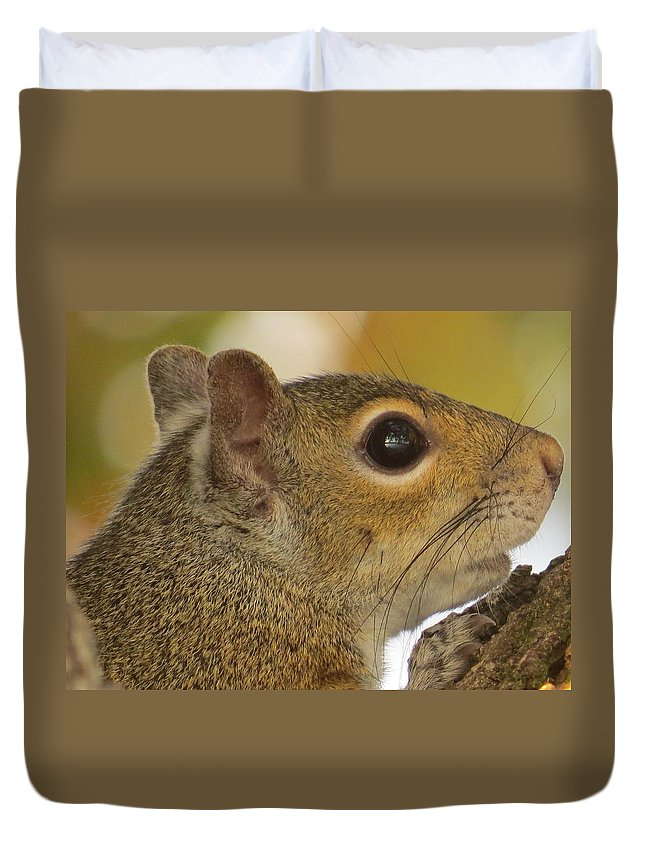 Squirrel Duvet Cover featuring the photograph Hiding by Zina Stromberg