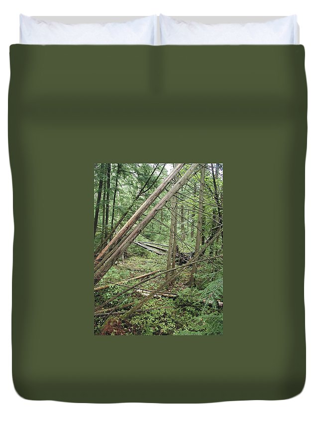 Downed Trees Duvet Cover featuring the photograph Higgins Lake by Joseph Yarbrough