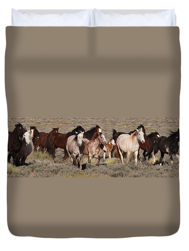 Mustangs Monument 2012 Duvet Cover featuring the photograph High Desert Horses by Diane Bohna