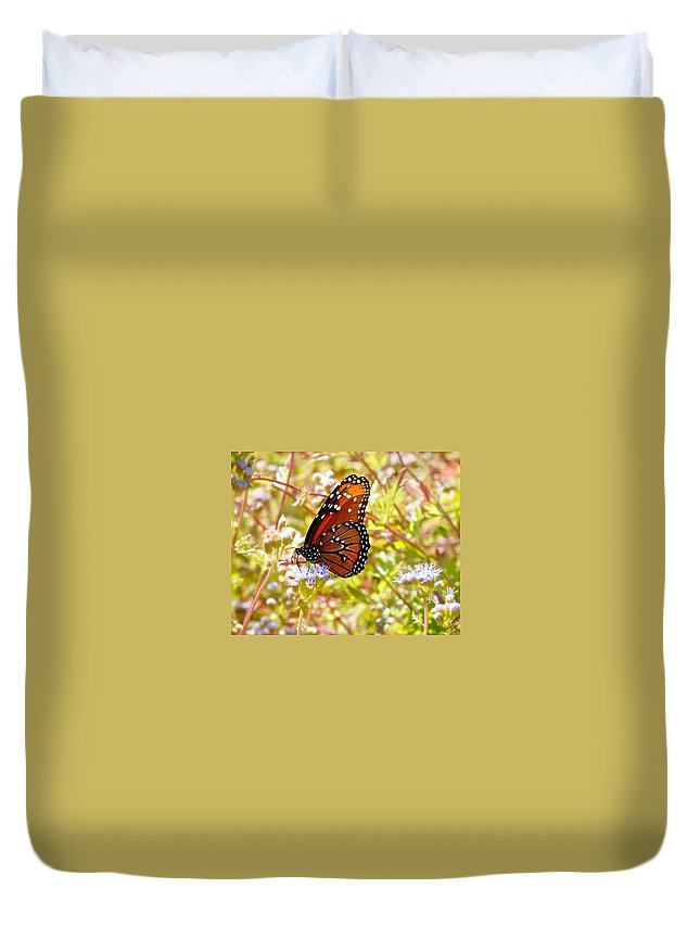 Macro Butterfly Duvet Cover featuring the photograph Hill Country Butterfly by Kristina Deane