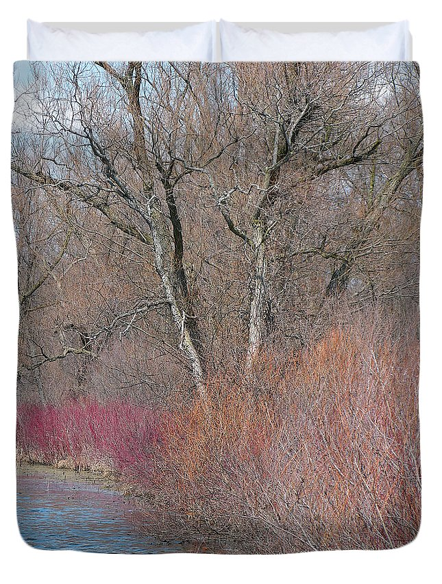 Spring Duvet Cover featuring the photograph Hint Of Spring by Ann Horn