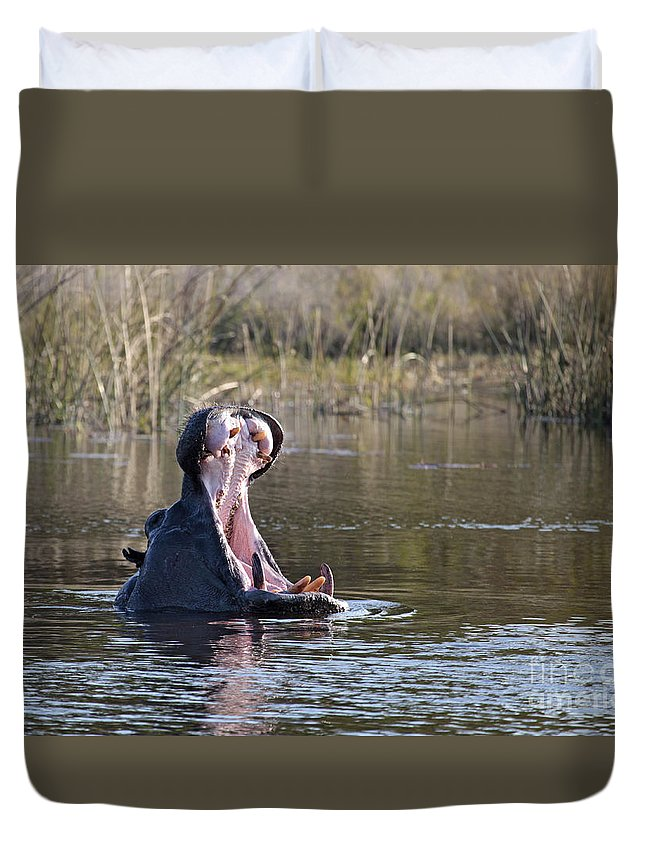 Hippopotamus Duvet Cover featuring the photograph Hippo Yawning by Liz Leyden