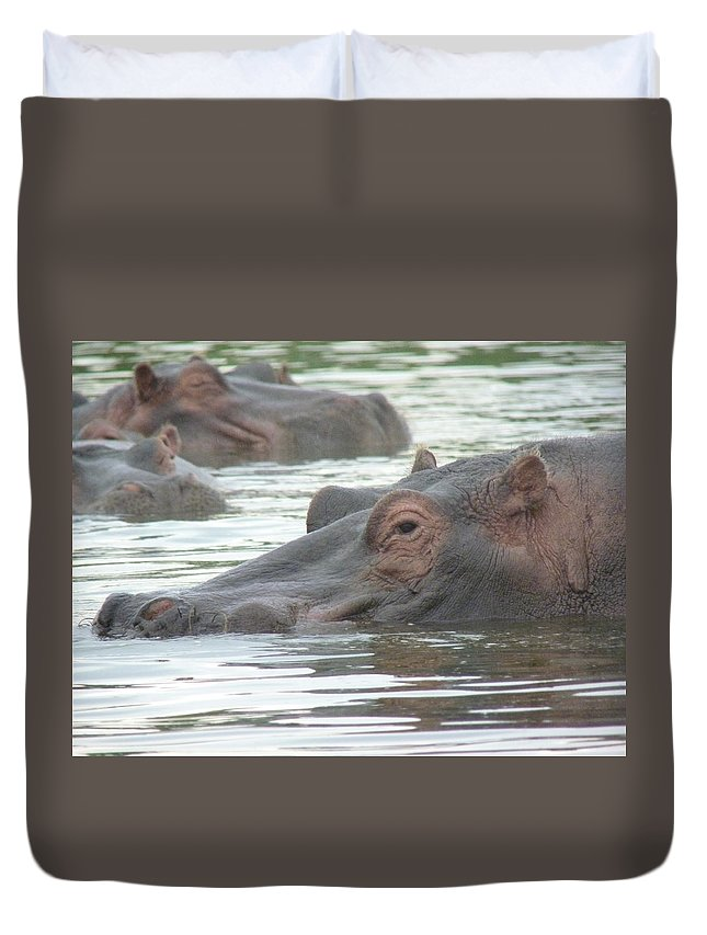 Hippopotamus Duvet Cover featuring the photograph Hippopotamus In Kenya by Tony Murtagh