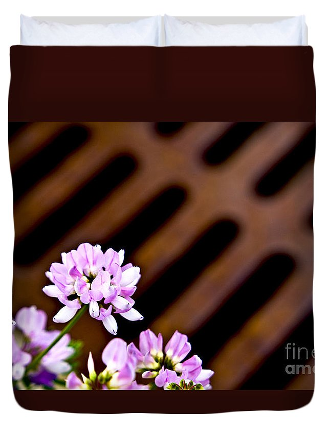 Wrought Iron Duvet Cover featuring the photograph His And Hers by Valerie Fuqua