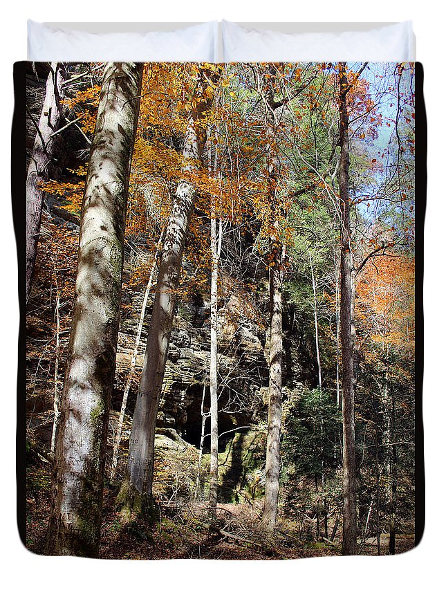 Forest Duvet Cover featuring the photograph Hocking Hills Trees by Karen Adams