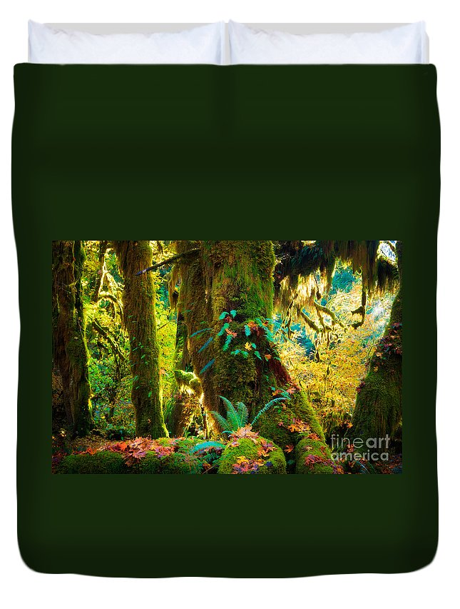 America Duvet Cover featuring the photograph Hoh Grove by Inge Johnsson