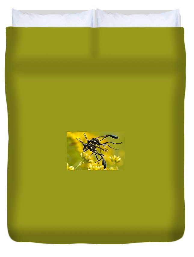 Wasp Duvet Cover featuring the photograph Holding On by Shane Holsclaw