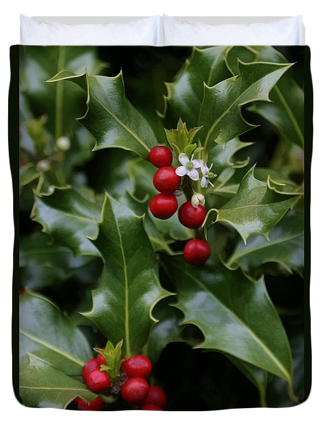 Holiday Holly Duvet Cover featuring the photograph Holiday Holly by Wes and Dotty Weber