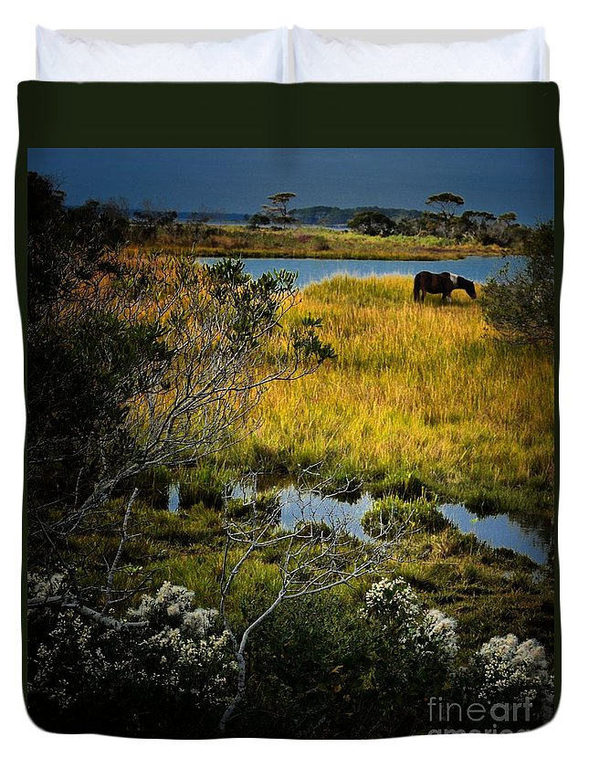 Landscapes Duvet Cover featuring the photograph Home On The Range by Robert McCubbin