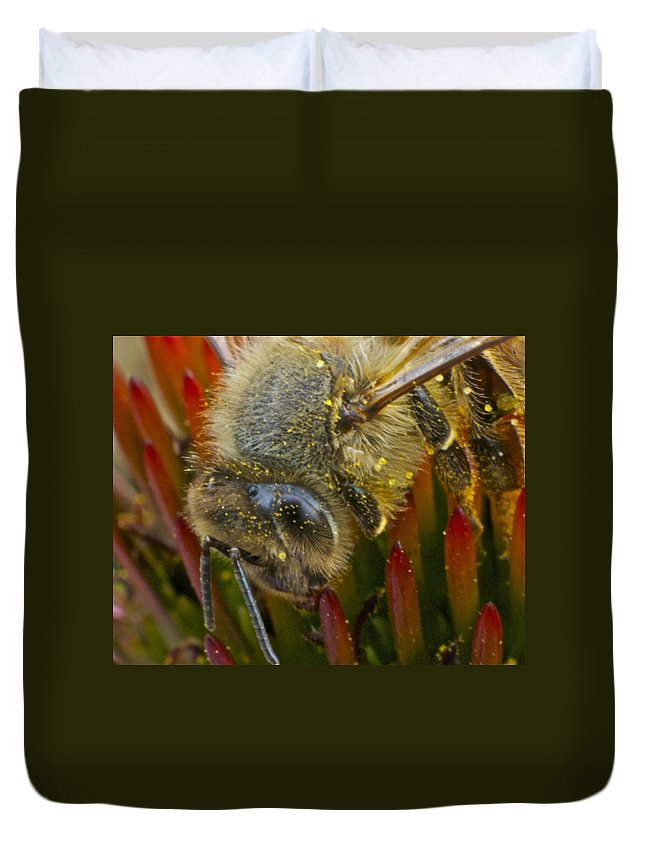 Honey Bee Duvet Cover featuring the photograph Honey Bee Profile by Michael Peychich