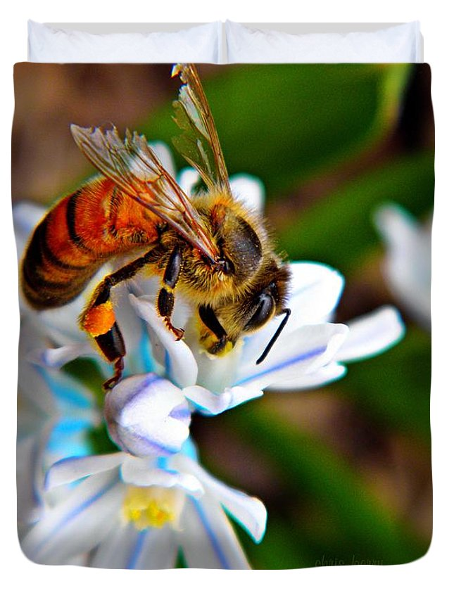 Squill Duvet Cover featuring the photograph Honeybee And Squill by Chris Berry
