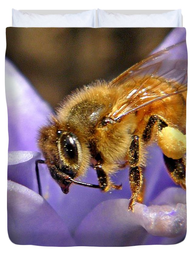 Insect Duvet Cover featuring the photograph Honeybee On Hyacinth by Chris Berry