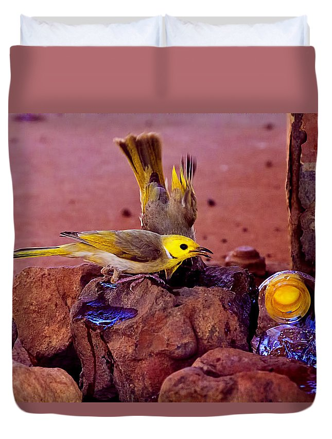 Honeyeaters Duvet Cover featuring the photograph Honeyeaters Drinking Water by Douglas Barnard