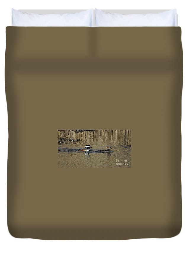Hooded Merganser Duvet Cover featuring the photograph Hooded Merganser Couple by Patti Smith