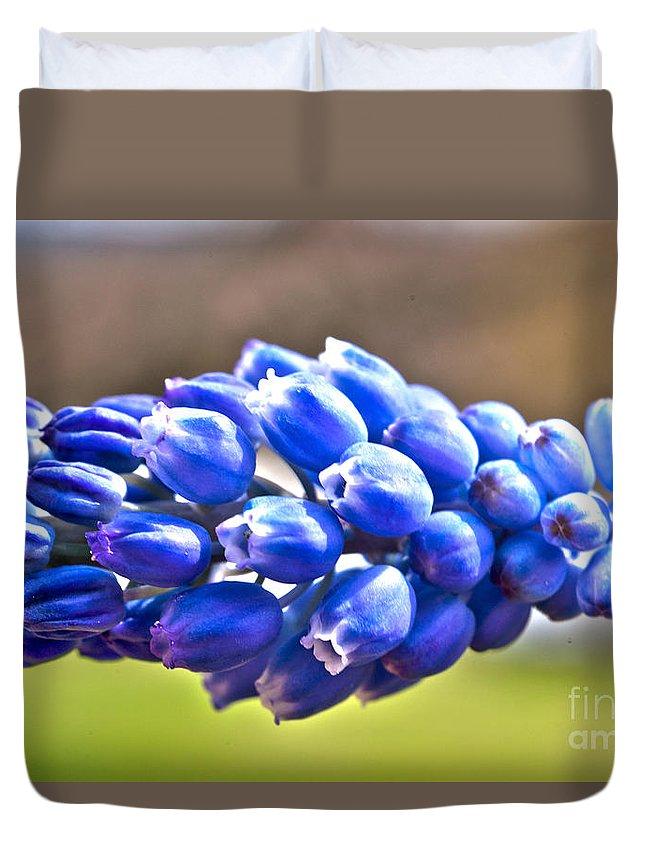Rystal Harman Duvet Cover featuring the photograph Horizontal Bluebell by Crystal Harman
