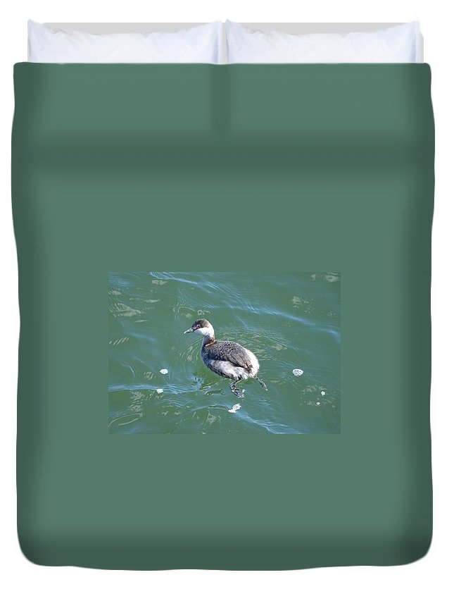Nature Duvet Cover featuring the photograph Horned Grebe by James Petersen