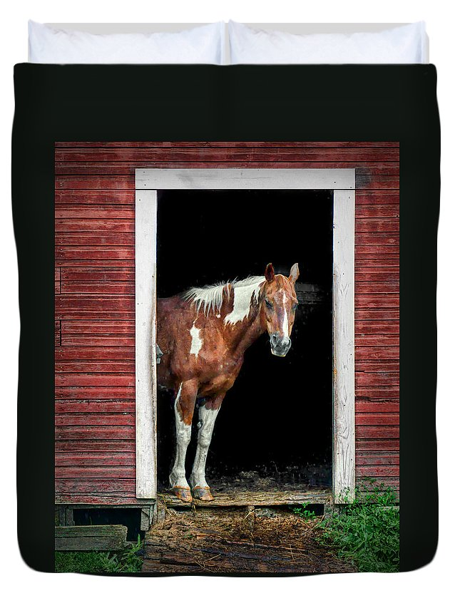 Horse Duvet Cover featuring the photograph Horse - Barn Door by Nikolyn McDonald