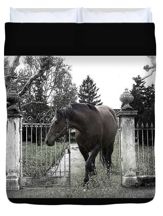 Horse Duvet Cover featuring the photograph Horse In Europe by Christine Sponchia