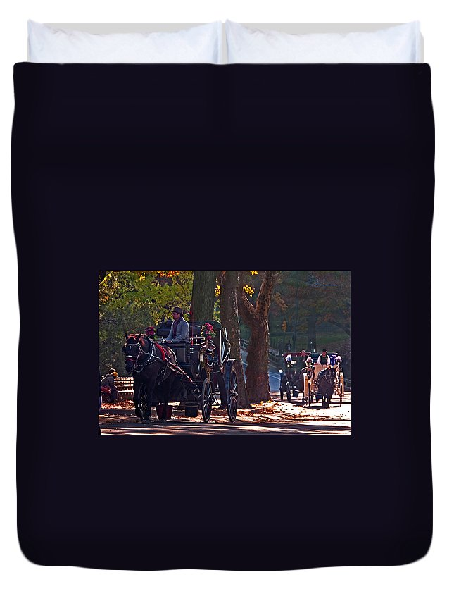 Central Park Duvet Cover featuring the photograph Horse Play by S Paul Sahm