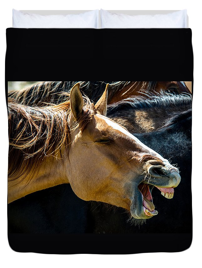 Horse Duvet Cover featuring the photograph Horse Yawn by Bob Keller