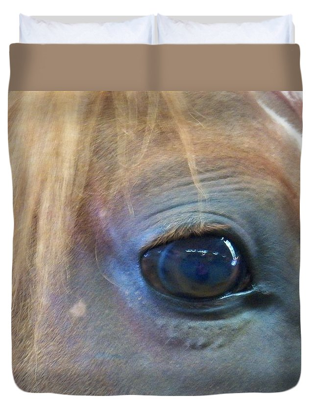Horse Duvet Cover featuring the photograph Horses Eye Reflection by Laurie Kidd