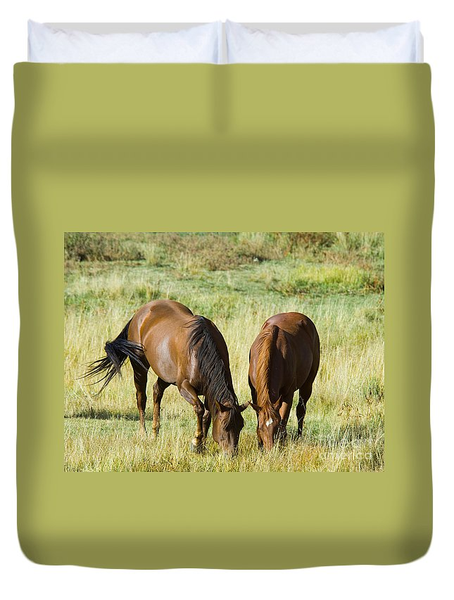 Horses Duvet Cover featuring the photograph Horses Grazing by Lee Roth