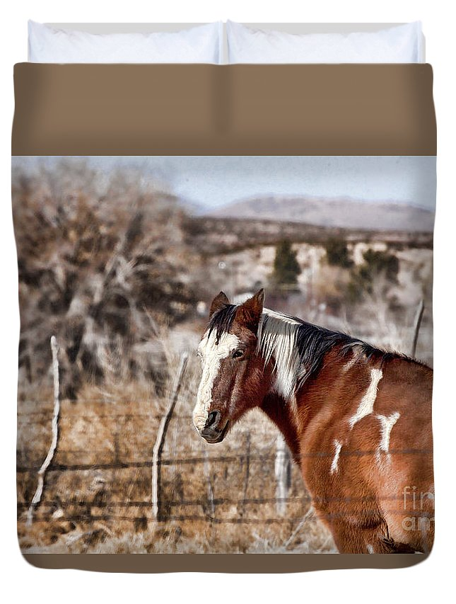 Horse Duvet Cover featuring the photograph Horsing About V3 by Douglas Barnard