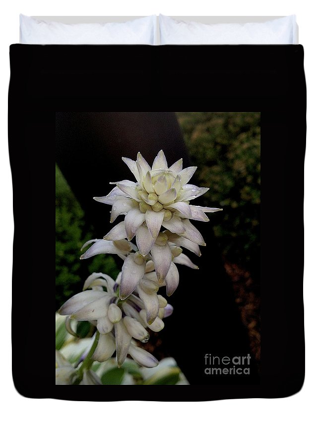 Bloom Duvet Cover featuring the photograph Hotel Hosta by Joseph Yarbrough