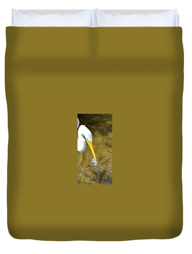Birds Duvet Cover featuring the photograph How To Fish by Shannon Harrington
