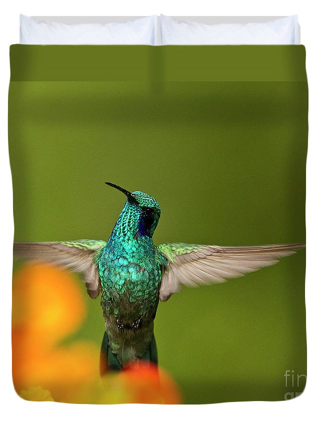 Bird Duvet Cover featuring the photograph Humming Along by Heiko Koehrer-Wagner