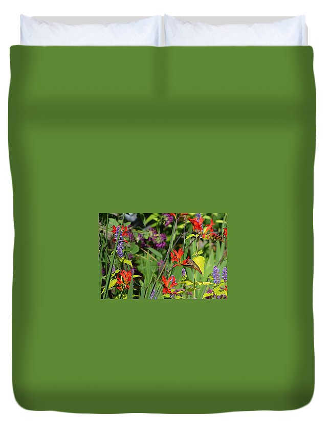 Hummingbird Duvet Cover featuring the photograph Hummingbird And Crocosmia Lucifer by Michelle Calkins